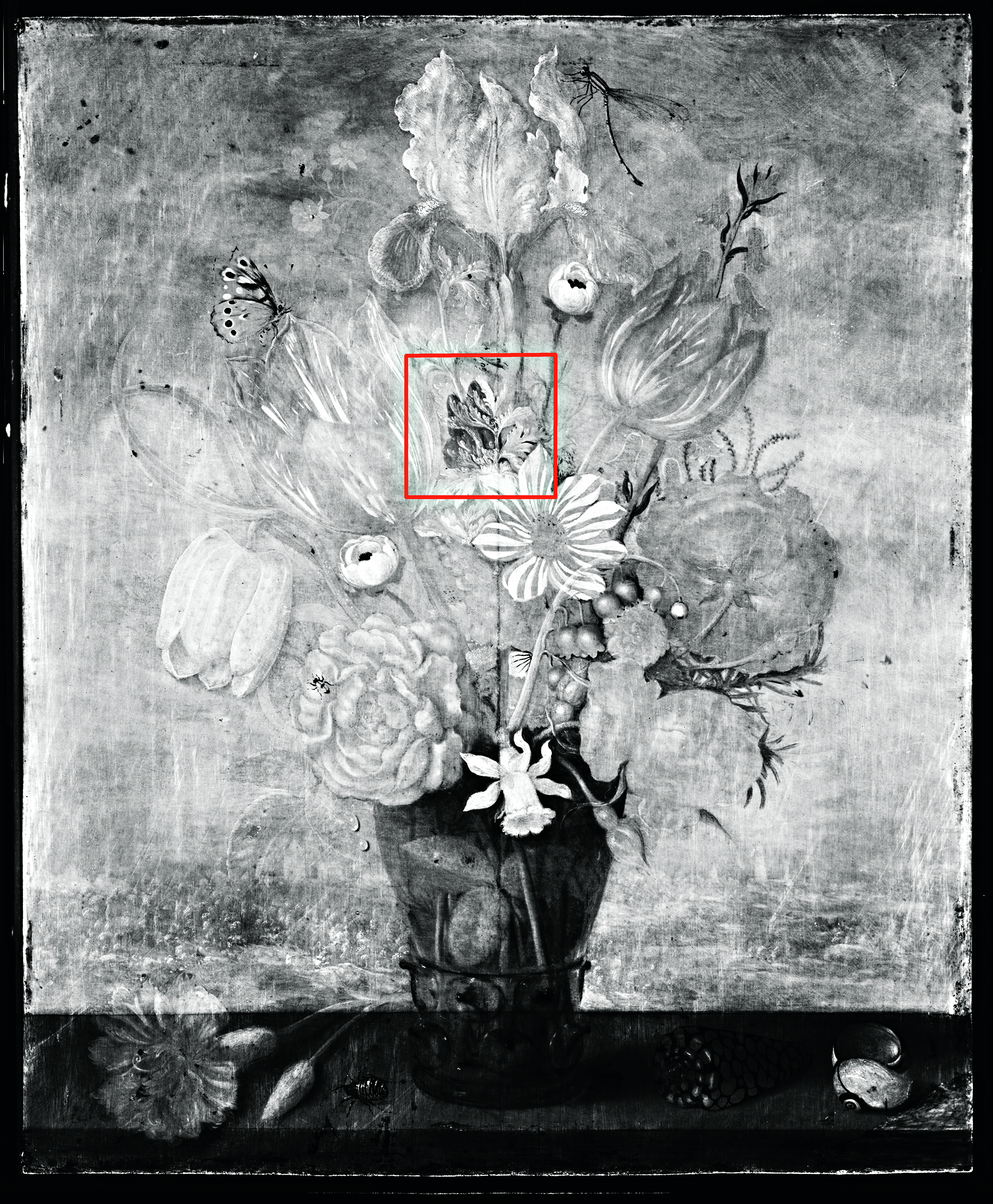 Image produced via Infrared Reflectography (IRR) of Ambrosius Bosschaert the Elder's, Bouquet of Flowers on a Ledge, 1619, Los Angeles County Museum of Art, gift of Mr. and Mrs. Edward W. Carter, photo © Museum Associates/LACMA Conservation, by Yosi Pozeilov