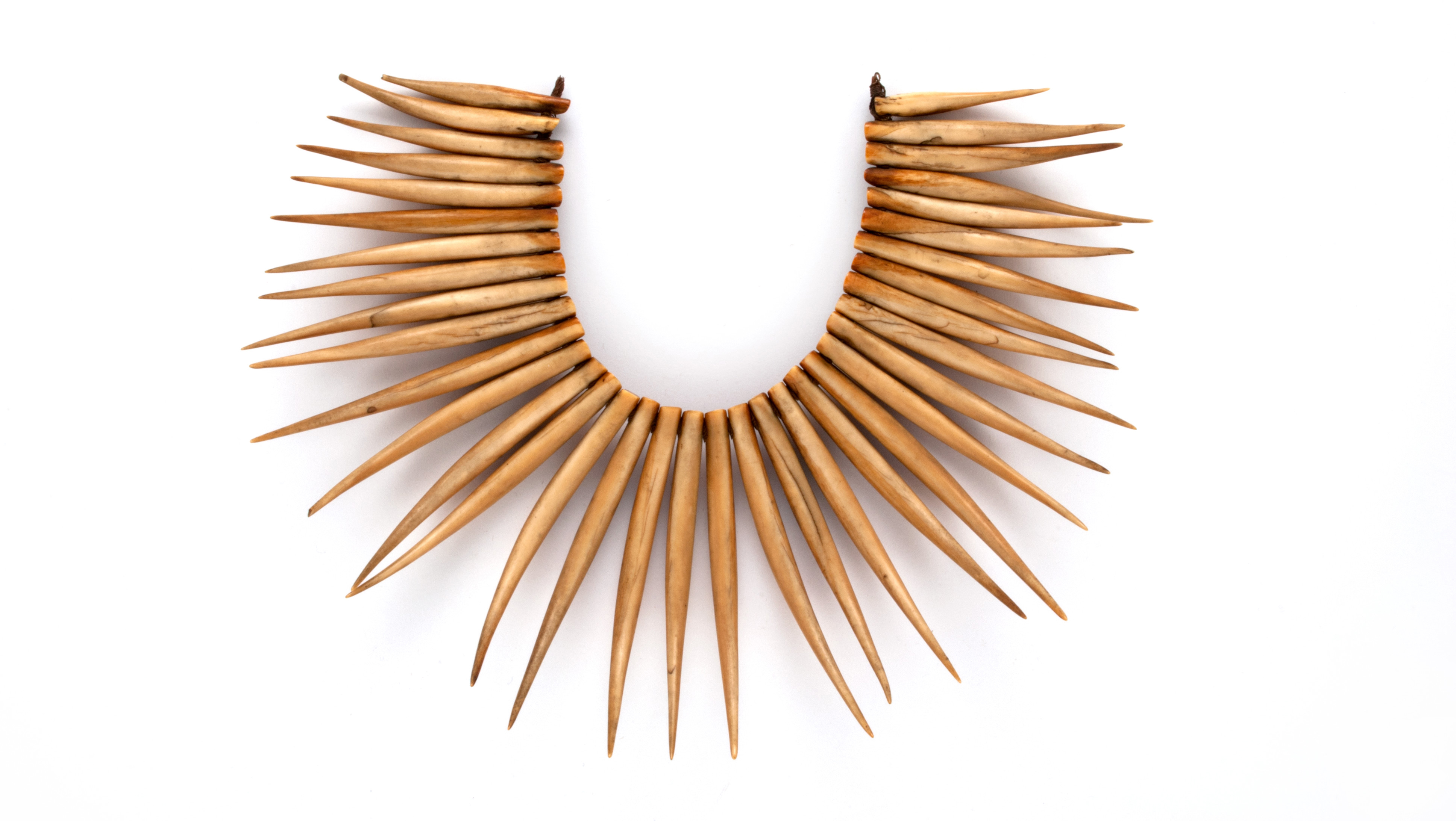Necklace (wasekaseka/waseisei), Fiji, early to mid-19th century, Museum of Archaeology and Anthropology, University of Cambridge: 1931.203, collected by Alfred Maudslay 1875–80, photo reproduced by permission of Museum of Archaeology and Anthropology, University of Cambridge