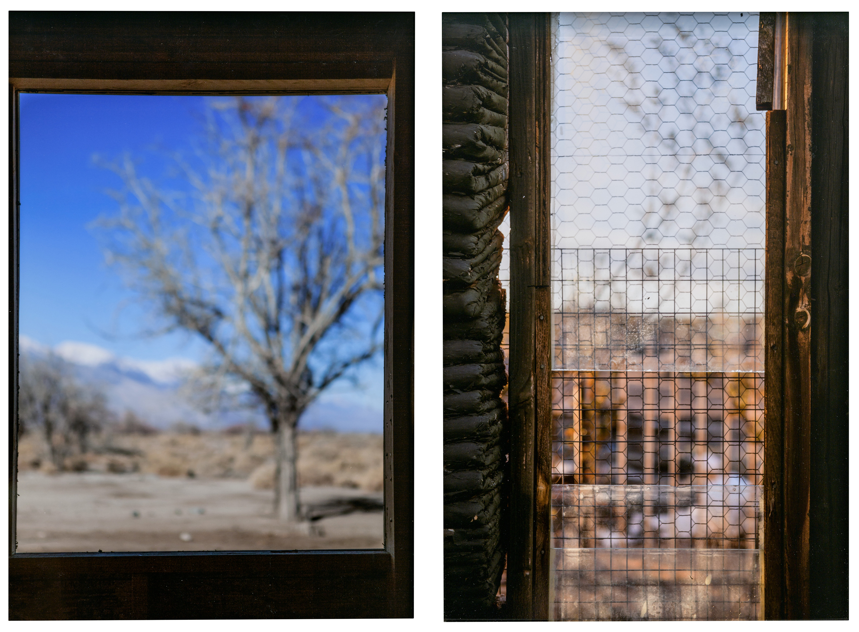 Left: Christina Fernandez, Toyo (Manzanar), 2017; Right: Christina Fernandez, Noah (Joshua Tree), 2016; Both: Los Angeles County Museum of Art, purchased with funds provided by Sharyn and Bruce Charnas, Dr. Janet Mohle-Boetani, and the Ralph M. Parsons Fund, © Christina Ferndandez, photos © Museum Associates/LACMA