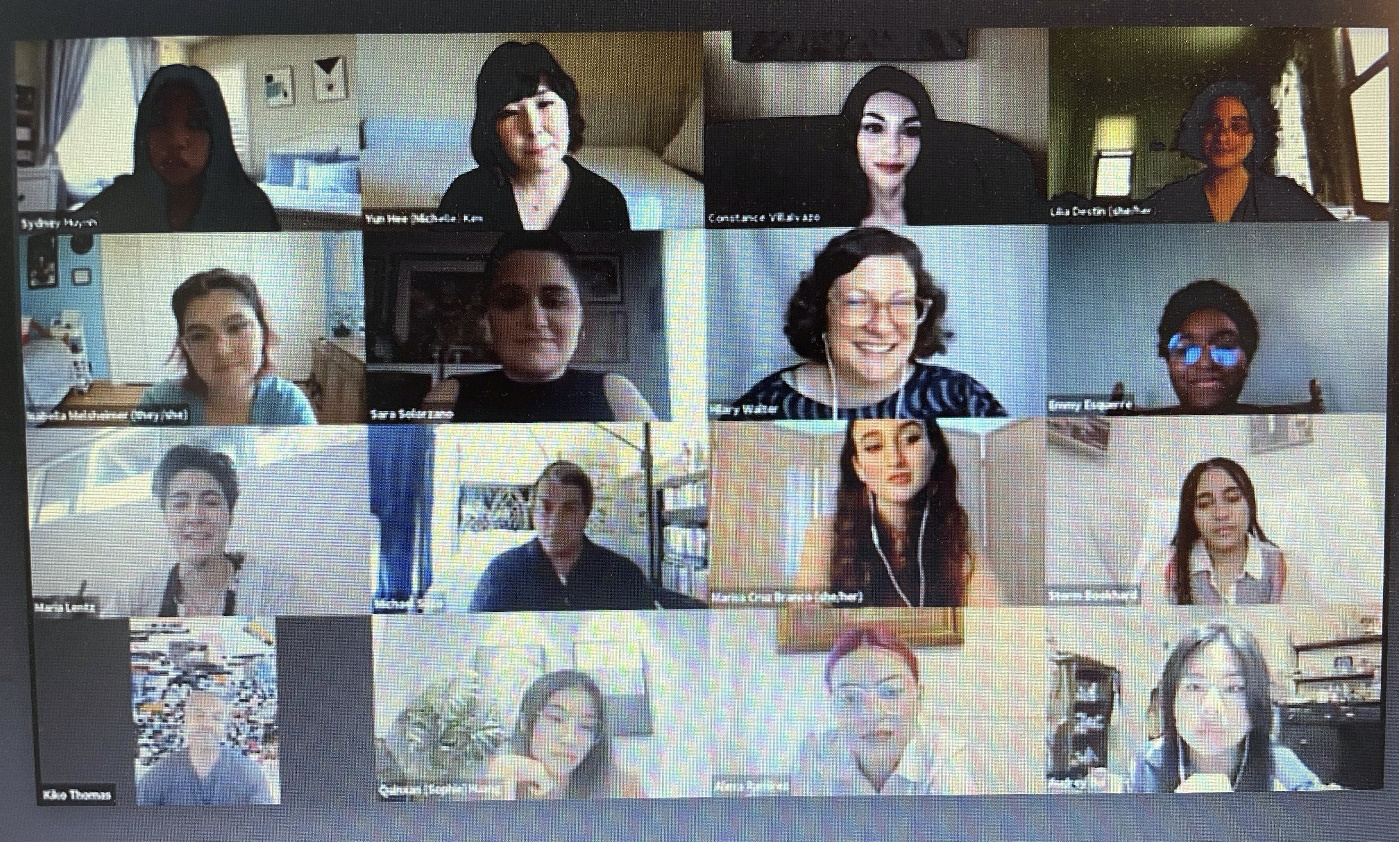 Screen of Zoom participants