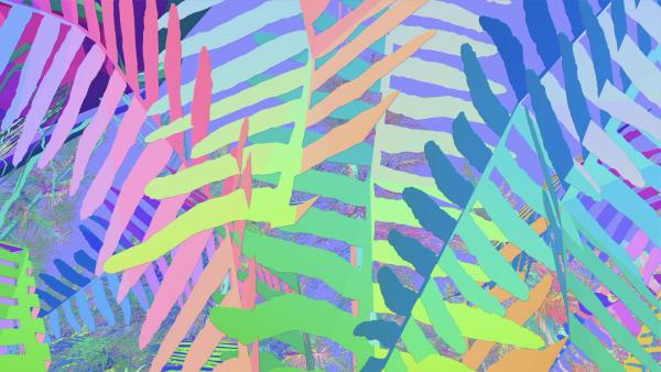 image of layered, multi-colored palm fronds