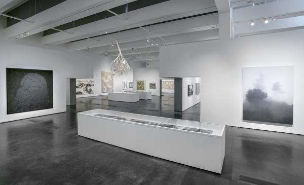 Installation photograph showing gallery view of Ink Dreams