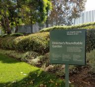Director's Roundtable Garden at the Los Angeles County Museum of Art