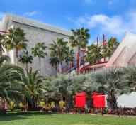 LACMA building and palm trees